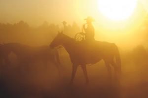 Message Cowboy