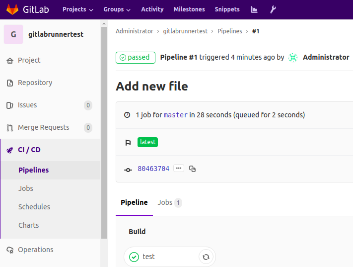 Examining the job in the finished pipeline in the GitLab Runner test project.